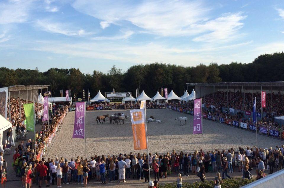 Succesvolle dag op Horse Event 2016